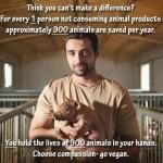Real Men Can't Be Vegan? — Let's Change A Myth!